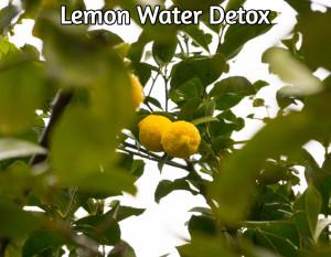 All Natural Lemon Water Detox